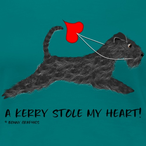 Kerry blue terrier thief