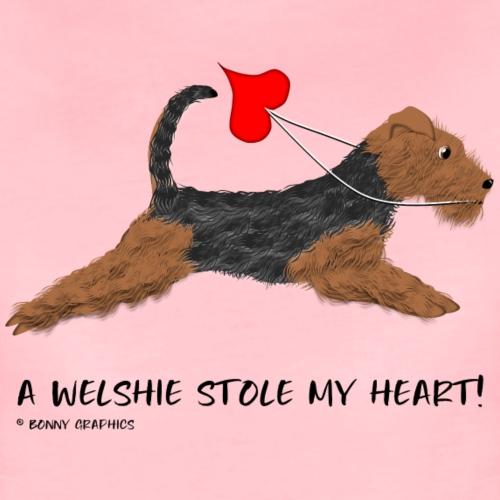Welsh terrier thief