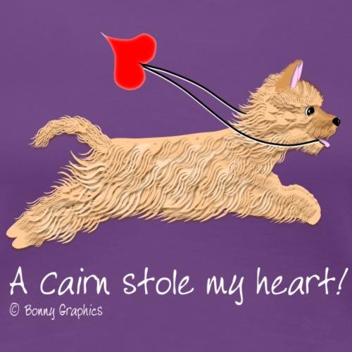 Cairn terrier red wheaten
