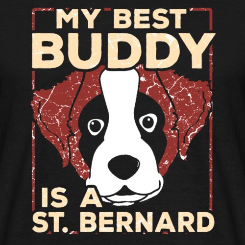 St. Bernard Bernhadiner chien