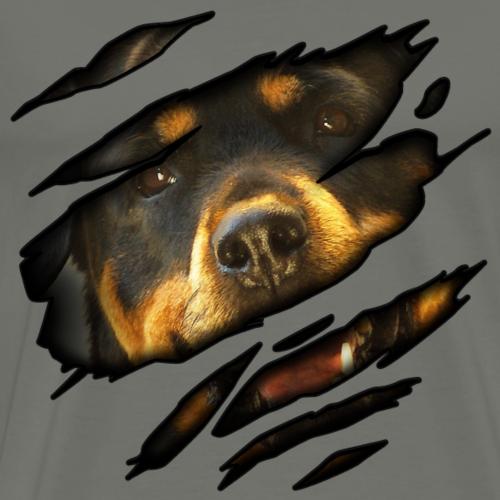 Rottweiler en moi
