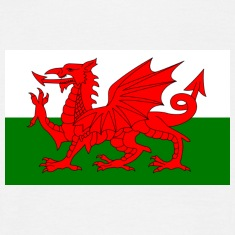 Wales Waves T-Shirt