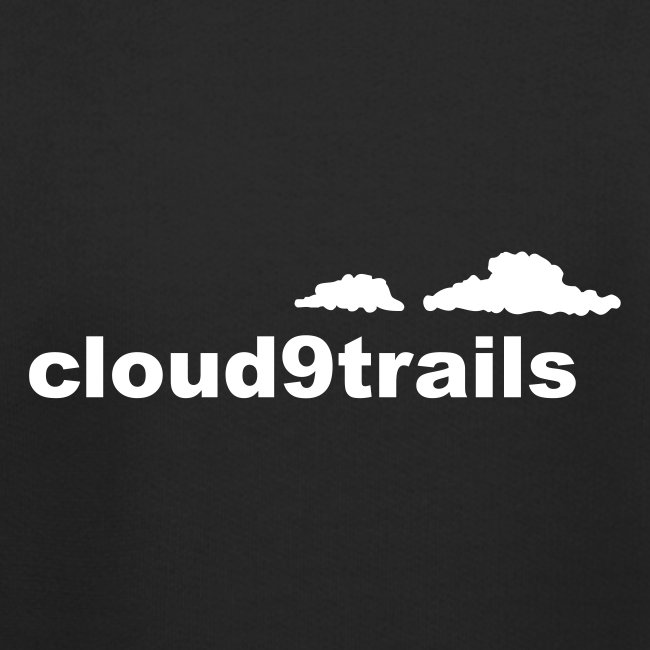 cloud9trails KIDS REFLECTIVE hoodie