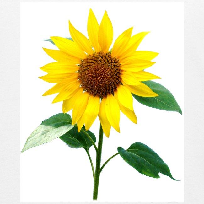 Sunflower Organic Children's T Shirt