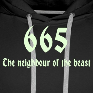 665 Sweat-shirts - Sweat-shirt à capuche Premium pour hommes