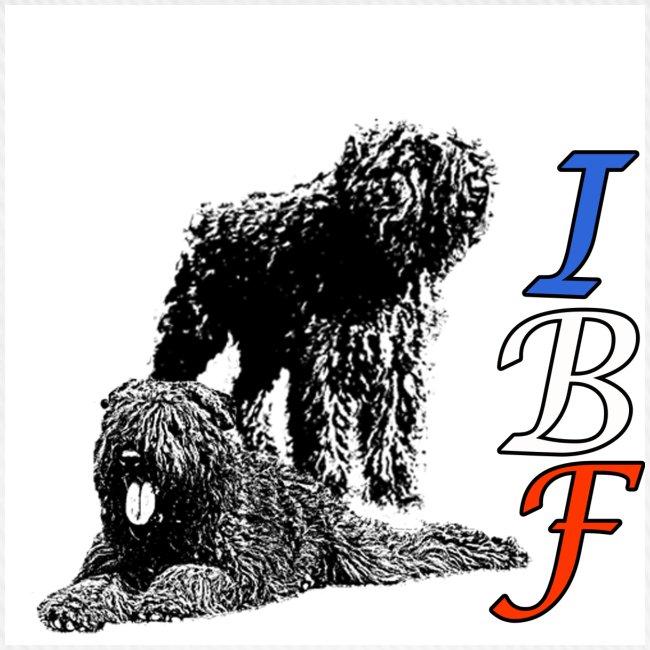 casquette IBF 3