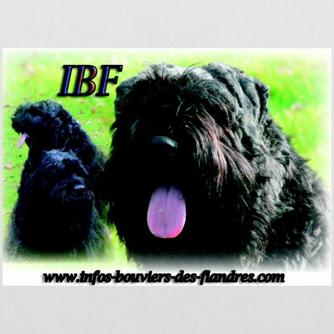 sac IBF 7