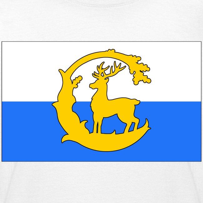Berkshire Flag (Kids' Front)