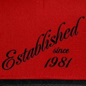 Established since 1981 Tee shirts - Casquette snapback