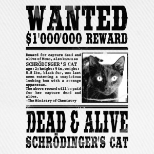 schrödinger's cat wanted black Other - Baseball Cap