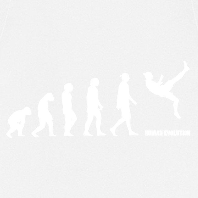 Zlatan Evolution / Colors