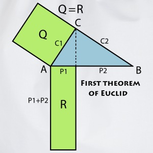 first_theorem_of_euclid_p1 Magliette - Sacca sportiva