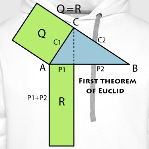 first_theorem_of_euclid_p1 Magliette - Felpa con cappuccio premium da uomo
