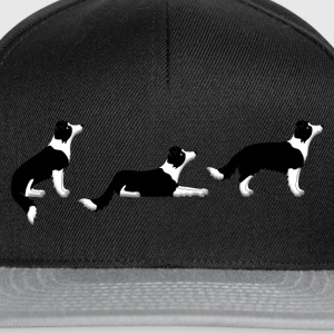 sit down up border collie Koszulki - Czapka typu snapback