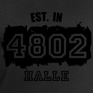 4802 Halle - Established T-Shirts - Männer Sweatshirt von Stanley & Stella