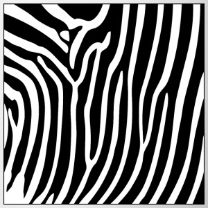 Zebra Print Phone & Tablet Cases - Mug