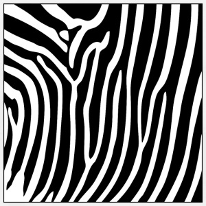 Zebra Print Phone & Tablet Cases - Men's Premium T-Shirt