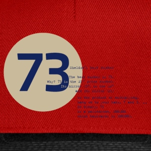 73 the best number BIG BANG Physiker Lehrer - Snapback Cap