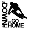 Go down(hill) or go home! T-Shirts - Männer Premium T-Shirt