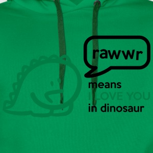 Rawr means I LOVE YOU in dinosaur Tee shirts - Sweat-shirt à capuche Premium pour hommes
