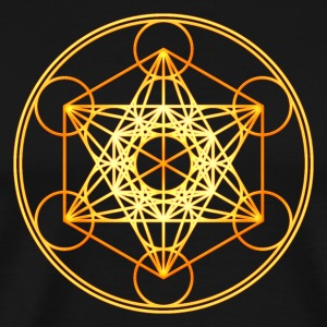 Metatron's Cube Sacred Geometry Mathematics Math Long Sleeve Shirts - Men's Premium T-Shirt