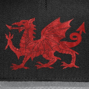 Welsh Red Dragon T-Shirts - Snapback Cap