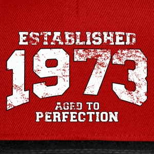 Geburtstag - established 1973 - aged to perfection - Snapback Cap