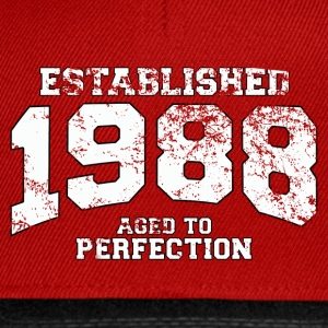 Geburtstag - established 1988 - aged to perfection - Snapback Cap