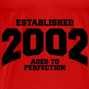 aged to perfection established 2002 (uk) Tops - Men's Premium T-Shirt