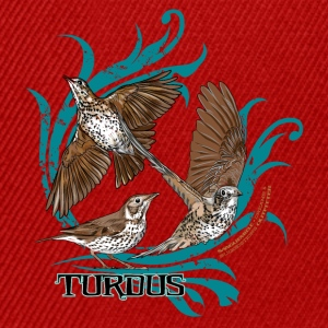 turdus Tee shirts - Casquette snapback