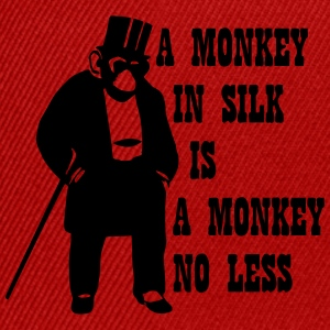 A Monkey In Silk Is A Monkey No Less T-Shirts - Snapback Cap