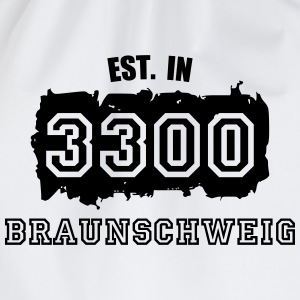 Established 3300 Braunsch T-Shirts - Turnbeutel