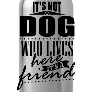 It's not a dog who lives here. It's a friend Felpe - Borraccia