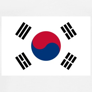 National flag of South Korea Accessories - Men's Premium T-Shirt