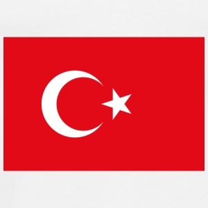 National Flag of Turkey Accessories - Men's Premium T-Shirt