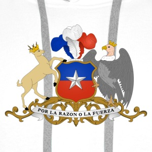 National coat of arms of Chile Sports wear - Men's Premium Hoodie