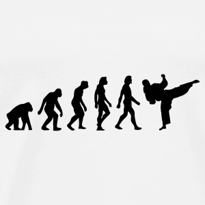 The Evolution of Taekwondo Other - Men's Premium T-Shirt