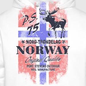Norway Moose - Vintage Flag Sports wear - Men's Premium Hoodie