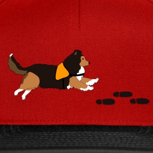 Free search Sheltie T-shirts - Snapbackkeps