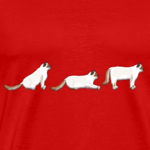 place get Sacred Birman Toppe - Herre premium T-shirt
