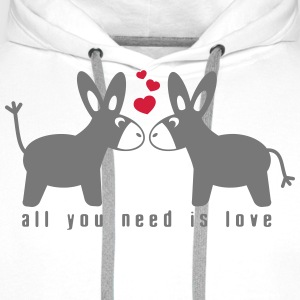 All you need is love Tee shirts - Sweat-shirt à capuche Premium pour hommes