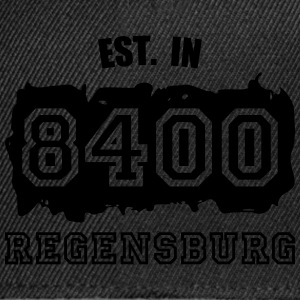 Established 8400 Regensburg Pullover & Hoodies - Snapback Cap