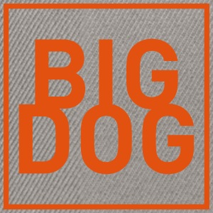BIG DOG 1 - Snapback Cap