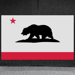 Flag of California T-Shirts - Snapback Cap