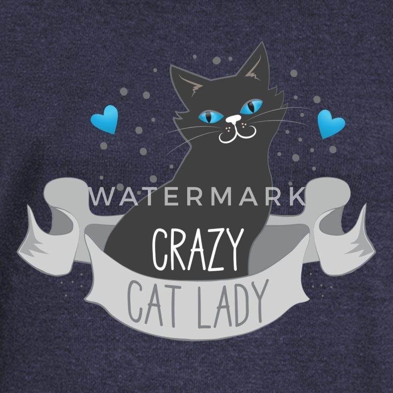 crazy cat lady banner Hoodies & Sweatshirts - Women's Boat Neck Long Sleeve Top