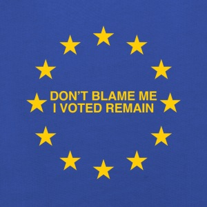 Don't blame me, I voted Remain - Kids' Premium Hoodie