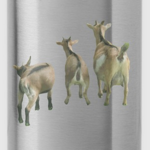 goats  - Water Bottle
