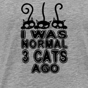 I Was Normal - 3 Cats Ago Langarmshirts - Männer Premium T-Shirt