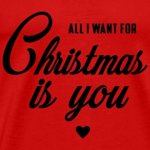 ALL I WANT FOR CHRISTMAS IS YOU Sportbekleidung - Männer Premium T-Shirt