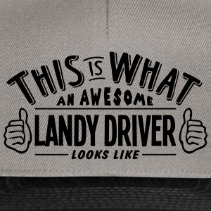 awesome landy driver looks like pro desi - Snapback Cap